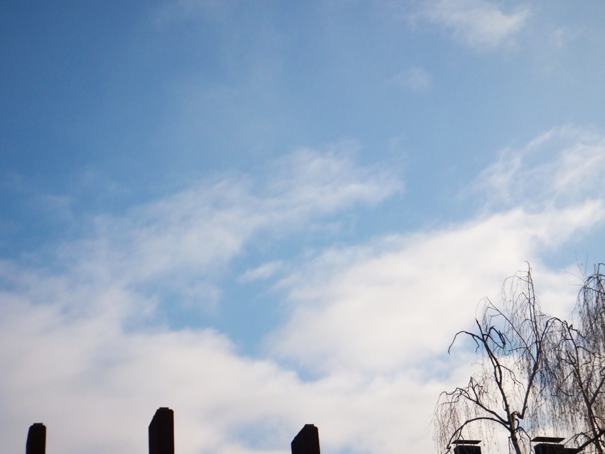 Schleierwolken vor hellblauem Himmel