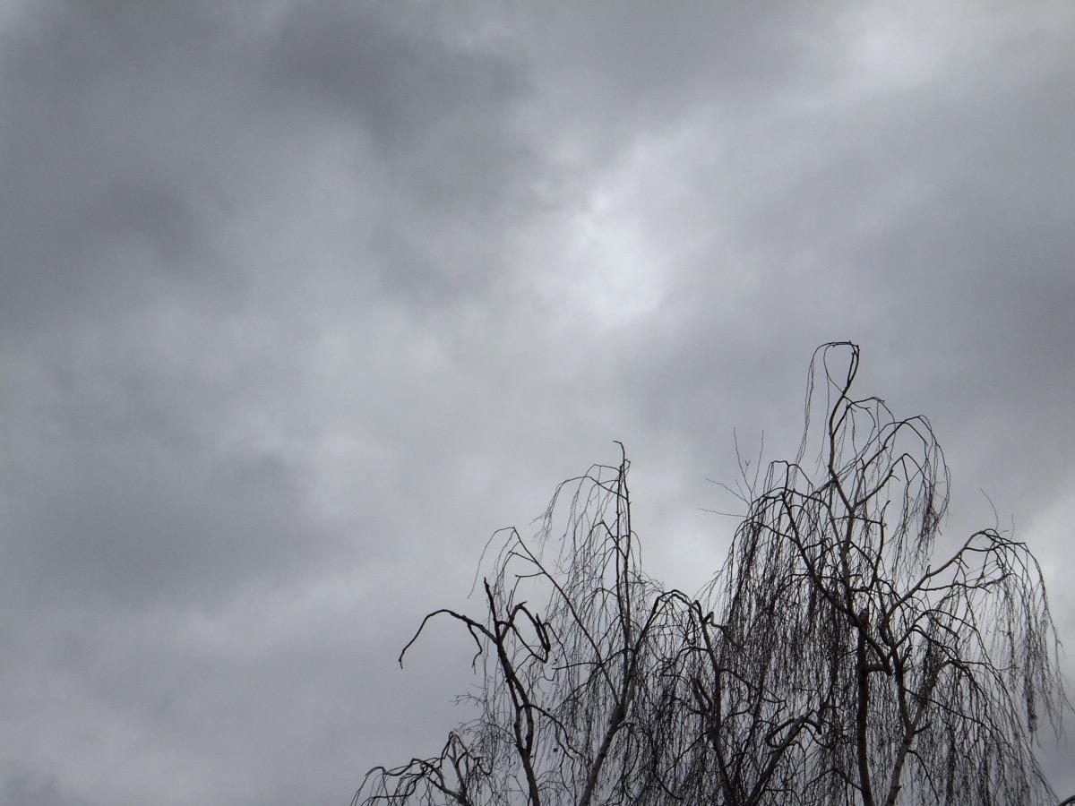Dunkelgraue Wolken, einige helle Flächen dazwischen, im Vordergrund unten die Baumkrone einer unbelaubten Birke