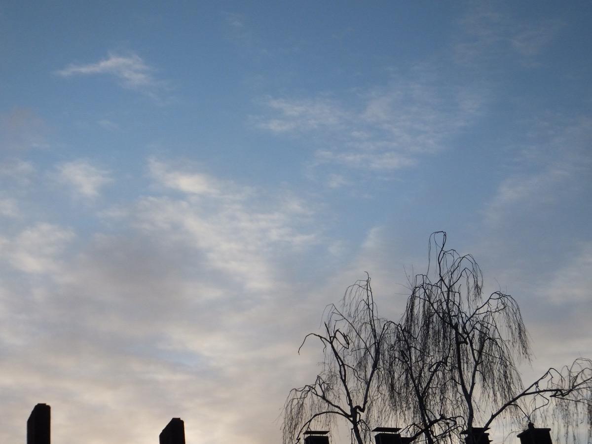 Schleierwolken an blauem Himmel, unten unbelaubte Birkenkrone und Schornsteine