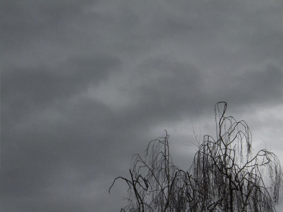 Dunkle Regenwolken, im Vordergrund eine unbelaubte Birkenkrone