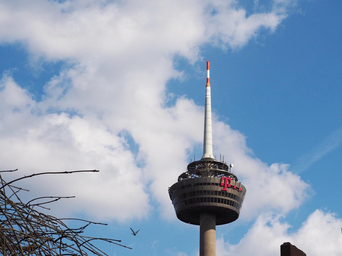 Weiße Haufenwolken vor blauem Himmel, ein Fernsehturm, Zweige und eine fleigende Taube