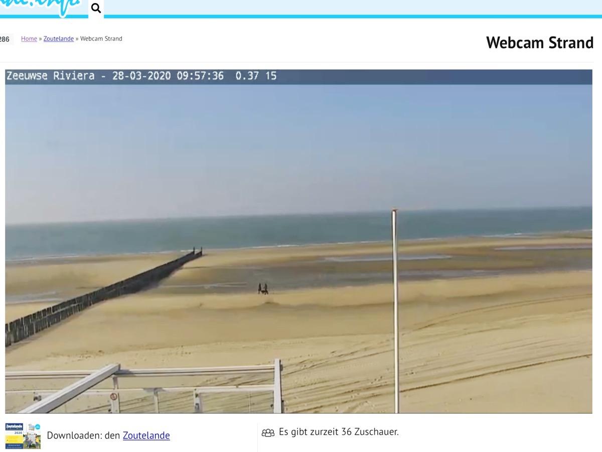 Webcam-Bild mit Blick auf einen Strand und das Meer mit wolkenlosem Himmel