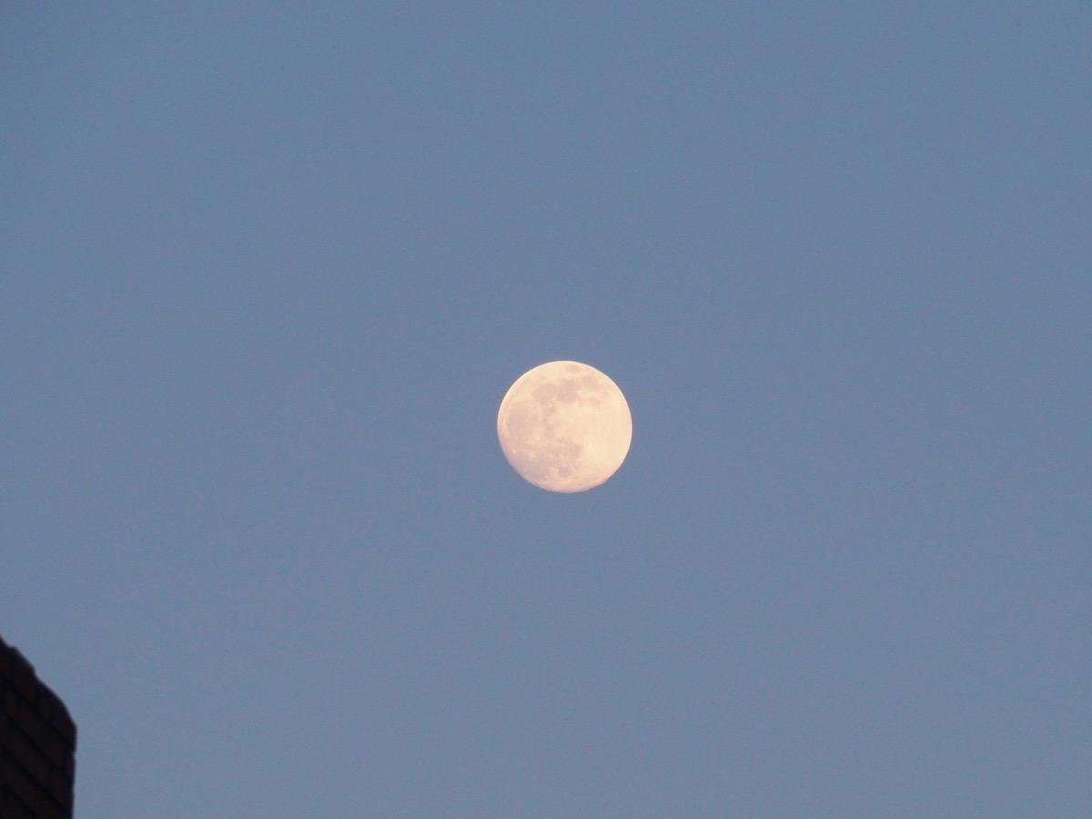 Der fast volle Mond an abendlich-blauem Himmel